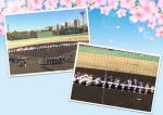 全国共済旗争奪横浜市少年野球大会開会式 3.17